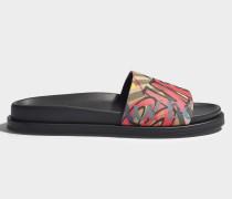 Slides Ashmore