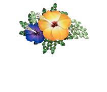 Emallierte Brosche mit Hibiskusdesign