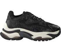 Schwarze Ash Sneaker Addict