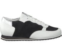 Schwarze Hassia Sneaker 7 301624 0102