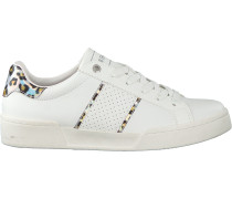 Sneaker Low Ti06 Ird Leo