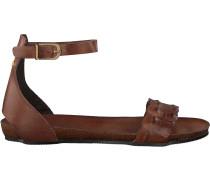 Braune Fred De La Bretoniere Ankle Boots 170010069