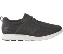 Timberland Sneaker Low Killington Flexi Knit Ox Grau Damen