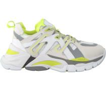 Weiße Ash Sneaker FLAsh12