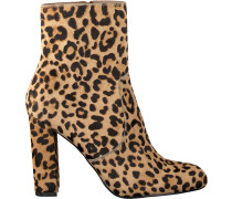 Braune Steve Madden Ankle Boots Editor-L