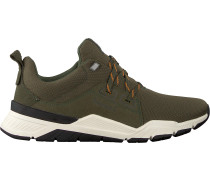 Timberland Sneaker Low Concrete Trail Oxford Grün Herren