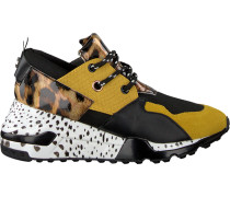 Gelbe Steve Madden Sneaker Cliff Sneaker