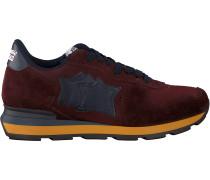 Rote Atlantic Stars Sneaker Antaris