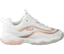 Weiße Fila Sneaker Ray F Low Wmn