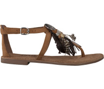 brown Lazamani shoe 75.540