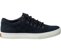 Graue Timberland Sneaker Adv 2.0 Cupsole Alpine Ox Adv