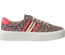 Rosane Calvin Klein Sneaker Low Jinjer