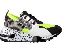 Grüne Steve Madden Sneaker Cliff Sneaker