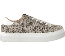 Beige Maruti Sneaker Ted Hairon Leather