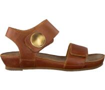 camel Ca'Shott shoe 13030