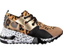Braune Steve Madden Sneaker Cliff Sneaker