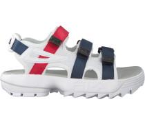 Weiße Fila Sandalen Disruptor Sandal WMN