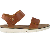 camel Ca'Shott shoe 17116