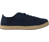 Blue Toms shoe Lena