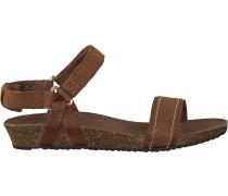 Braune Teva Sandalen W Ysidro Stich Sandal