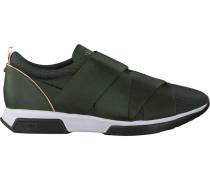 Grüne Ted Baker Sneaker 917726 Queanem
