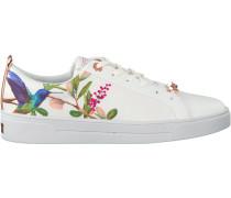 Weiße Ted Baker Sneaker Ahfira Highgrove