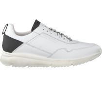 Sneaker Low Wingliner