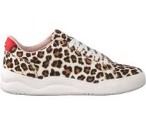 Schwarze Mexx Sneaker Chanae