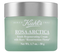 Rosa Arctica Cream