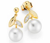 Perlenohrringe gold / perlweiß