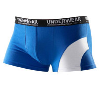 Packung: Boxer Authentic Underwear (4 Stck.)