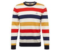 Pullover 'd1. Multi Colored Stripe Crew'