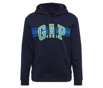 Sweatshirt 'v-Go Arch Stripe PO HD'
