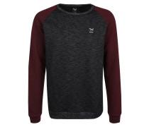 Sweatshirt mit Raglan-Ärmeln