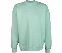 Sweater ' Centerfront Wordmark ' hellgrün