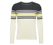 Pullover 'plated stri cnk'