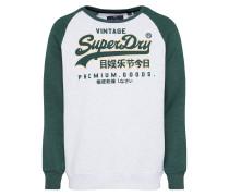 Sweater hellgrau / dunkelgrün