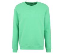 Sportsweatshirts 'zayn New' grün