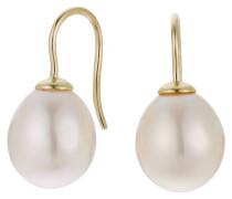 Ohrhänger 375 Gelbgold mit Süßwasser-Zuchtperle 10,0 - 11,0 mm