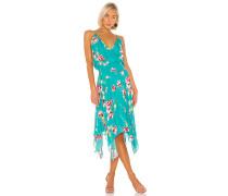 Nolen Kleid