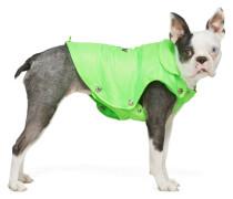 Puffer Dog