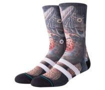 Taylor Creek Socks black