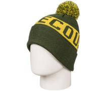 Chester Beanie Youth chive