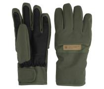 Franchise SE Gloves beetle