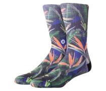 Trackies Socks blue