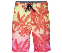 Phantom Colin Boardshorts multi