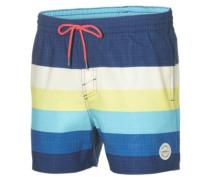 Mid Vert Horizon Boardshorts blue aop