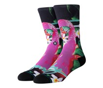 Franny Socks multi