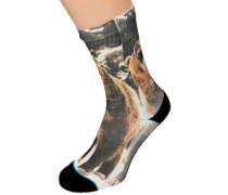 Leos Socks multi