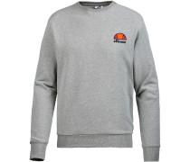 Diviera Sweatshirt Herren